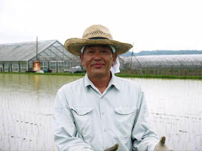 無農薬の『雑穀米』、『発芽玄米』の販売に向けて! その1_a0254656_19173562.jpg