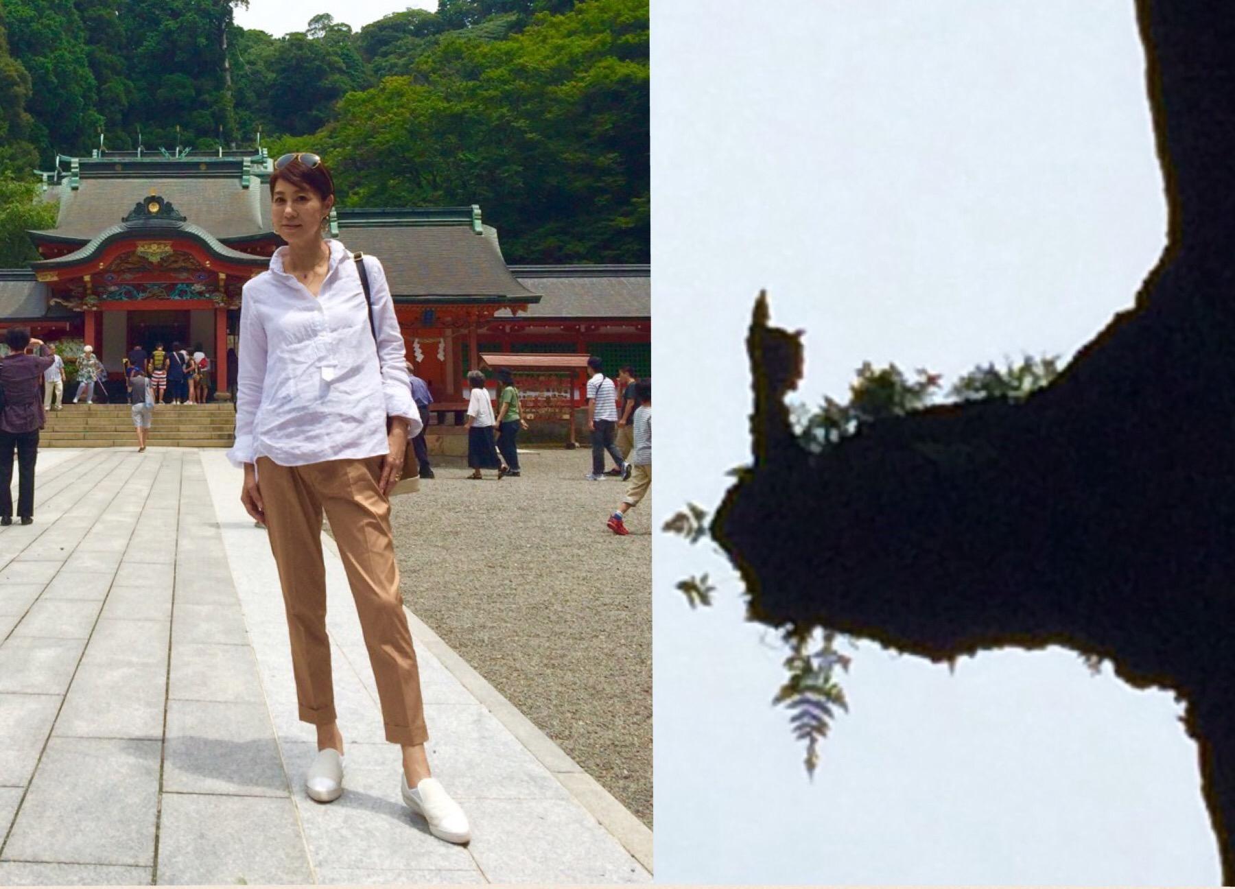 悠々浪漫の旅「霧島」へ♪_a0138976_16544214.jpg