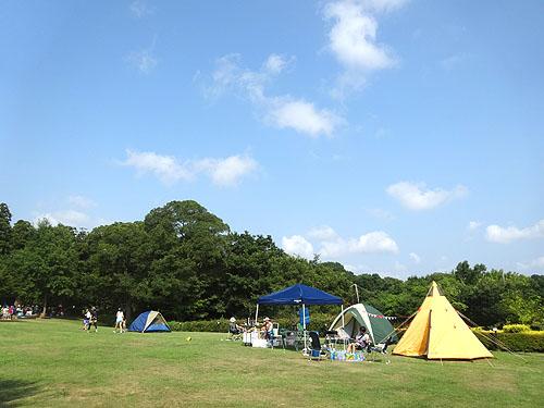 夏の思い出キャンプ_c0137404_22545025.jpg