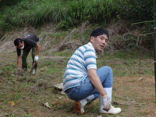 8/24 畑の清掃_a0154110_13384650.jpg
