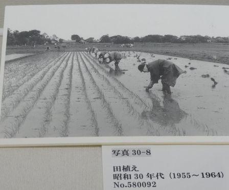久喜市公文書館_b0017215_17272190.jpg