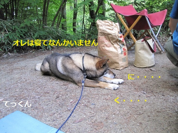f0143123_8262177.jpg