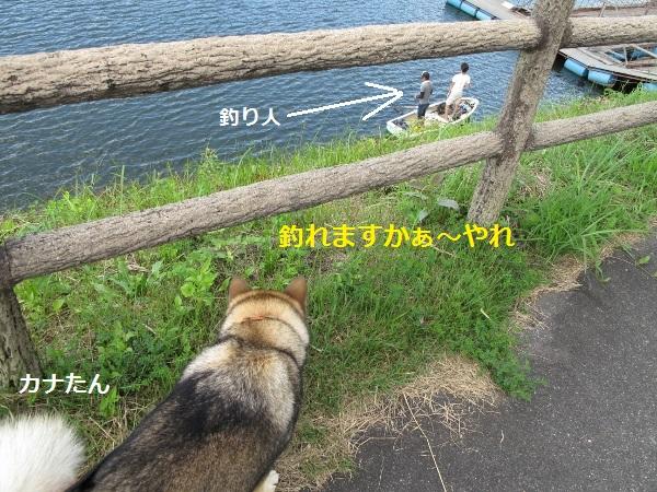 f0143123_838425.jpg