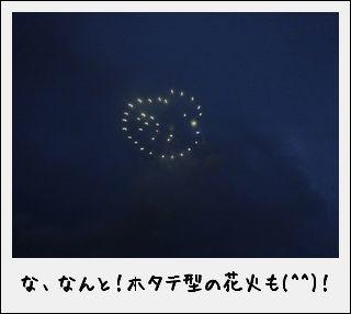 LIGHT UP NIPPON  東北を、日本を、花火で、元気に。_c0259934_11010838.jpg