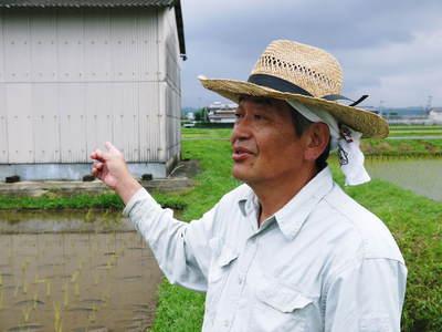 無農薬の『雑穀米』、『発芽玄米』の販売に向けて! その2_a0254656_18244829.jpg