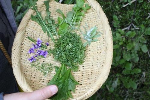09/22 かわしまようこさんによる、 雑草教室 摘み草でガレット_b0284270_22542542.jpg