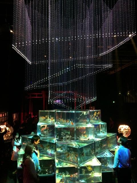 アートアクアリウム2015~江戸・金魚の涼~_a0138976_13313528.jpg