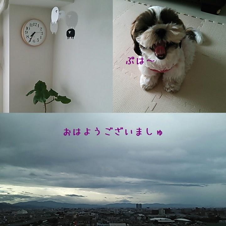 c0363378_10083227.jpg