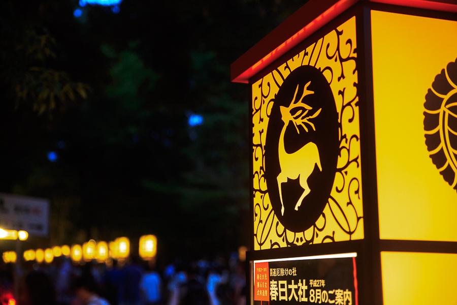 中元万燈籠! ~春日大社~_b0128581_21511836.jpg