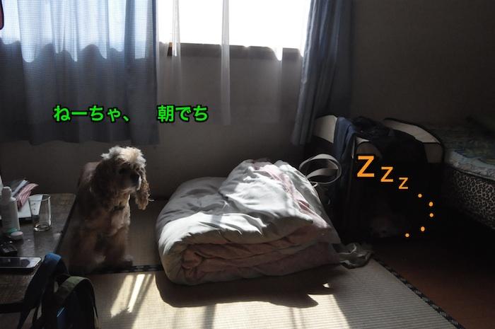 b0067012_0492046.jpg