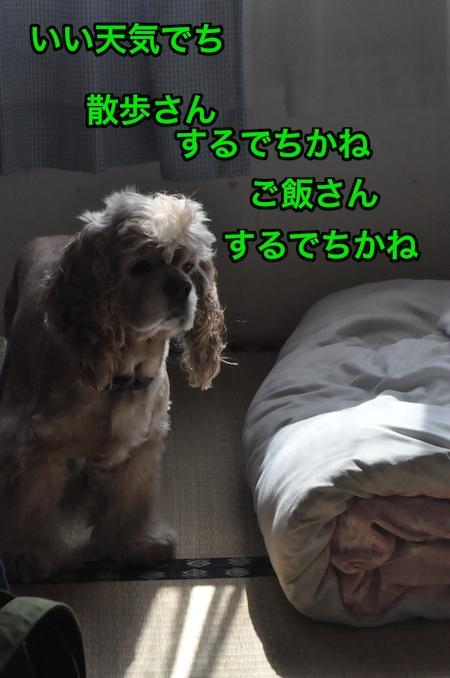 b0067012_055261.jpg