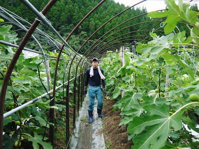 田舎暮らしの台風15号の爪痕と農業への熱い思い!_a0254656_19182712.jpg