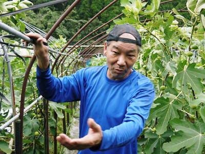 田舎暮らしの台風15号の爪痕と農業への熱い思い!_a0254656_19213841.jpg