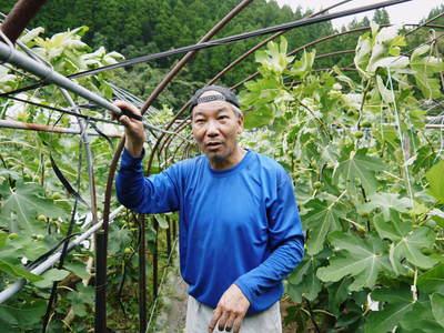 田舎暮らしの台風15号の爪痕と農業への熱い思い!_a0254656_1933239.jpg