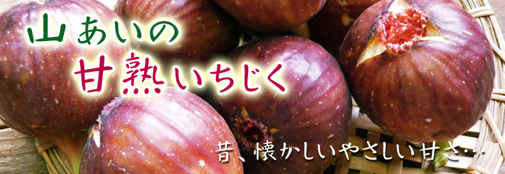 田舎暮らしの台風15号の爪痕と農業への熱い思い!_a0254656_1946111.jpg