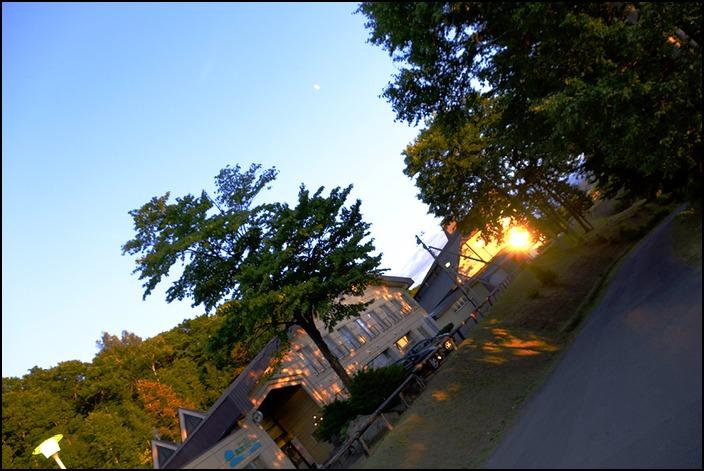 木漏れ日に囲まれての夕方のお散歩でした_a0031363_1045861.jpg