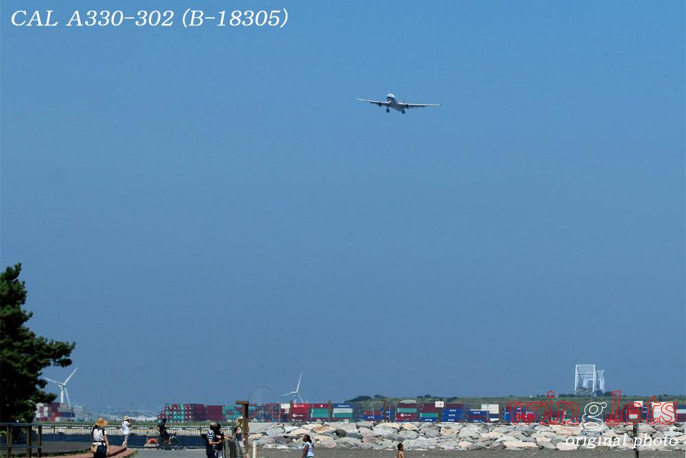 '15年 城南島・海浜公園レポート・・・CAL/B-18305_f0352866_22141512.jpg