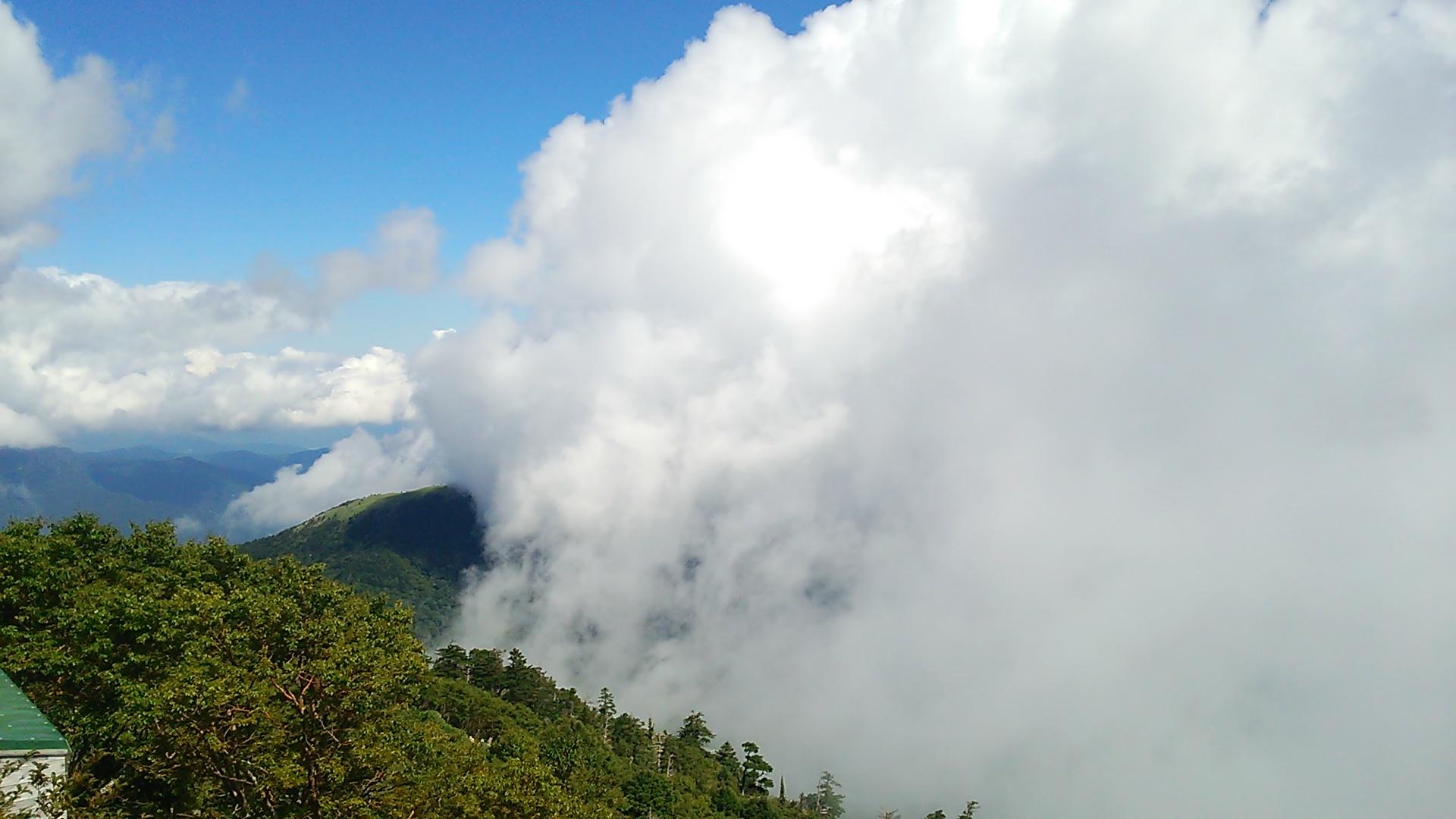 8月27日 朝の気温 11℃。どんどん気温が下がります。今朝は滝雲のおまけつき雲海。_c0089831_1038345.jpg