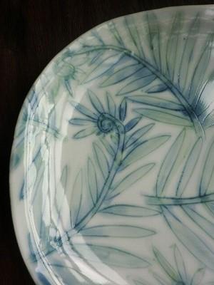 オンラインショップのご案内~古川桜さんのシダ文楕円皿_b0132444_13293852.jpg