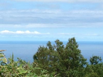 塩谷丸山から海~! 24/08/\'15_e0326953_021398.jpg