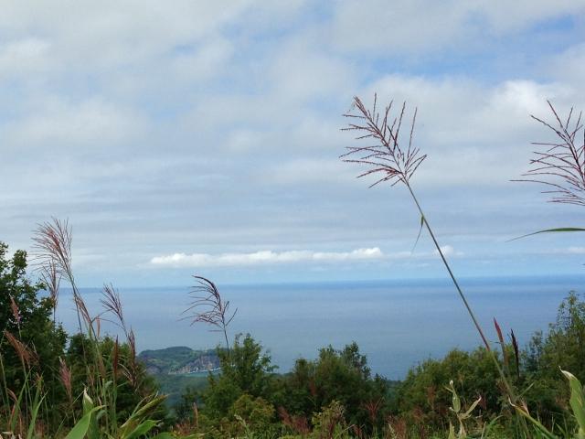 塩谷丸山から海~! 24/08/\'15_e0326953_0512522.jpg