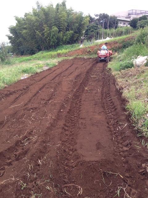 適度な雨で 土が潤いました 播種や畝作りを始めます 畑直蒔きの畝やパレット蒔きの様子_c0222448_14310825.jpg