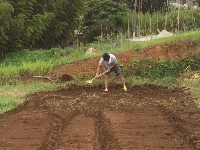 適度な雨で 土が潤いました 播種や畝作りを始めます 畑直蒔きの畝やパレット蒔きの様子_c0222448_14322687.jpg