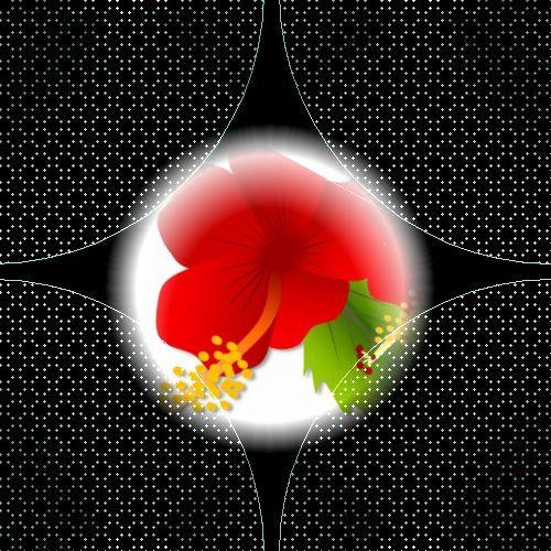 b0133752_10583416.jpg