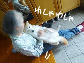 b0057675_20491184.jpg