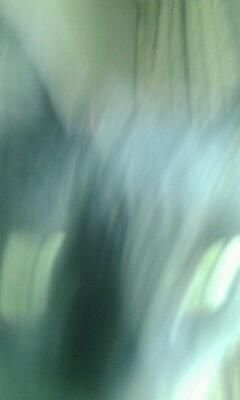 f0127282_8343236.jpg