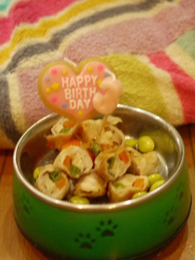 チョコ3歳のお誕生日おめでとう♪\(^o^)/♪_e0159185_964528.jpg
