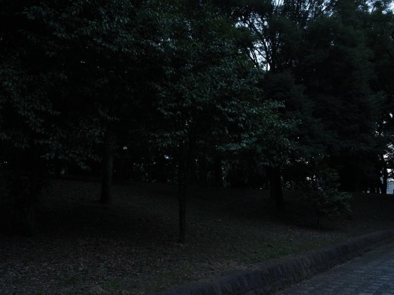 f0175998_23550696.jpg