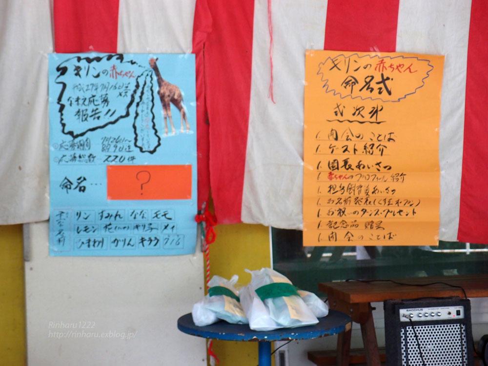 2015.8.16 宇都宮動物園☆キリンの夏子ちゃんと弟君【Girrafe】_f0250322_1514579.jpg