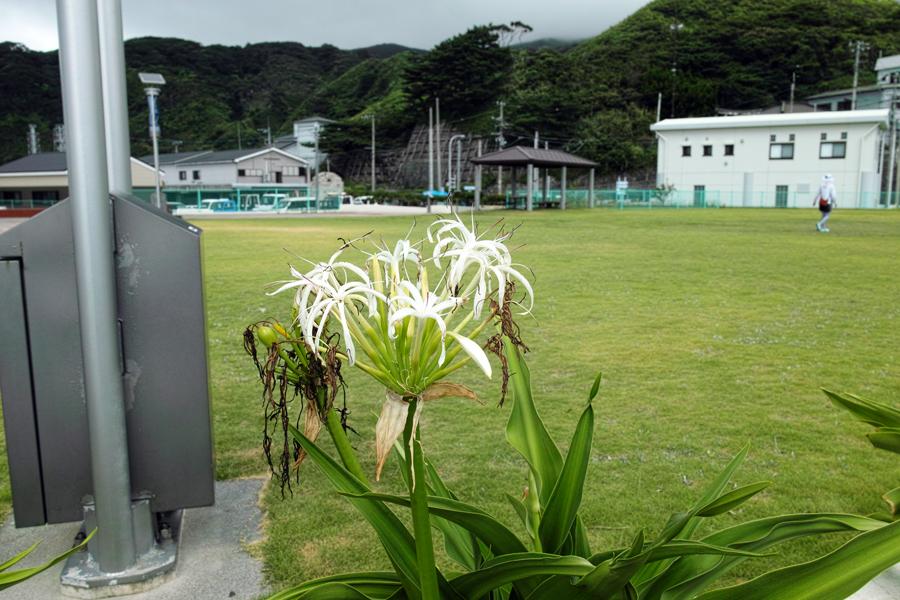 神津島特集⑩ 神津島でのお食事は、「よっちゃーれセンター」がオススメ!_c0223825_15372573.jpg