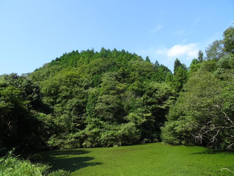 凄い人が孝子の森の会員に入ってくれた     by     (TATE-misaki)_c0108460_00535217.jpg