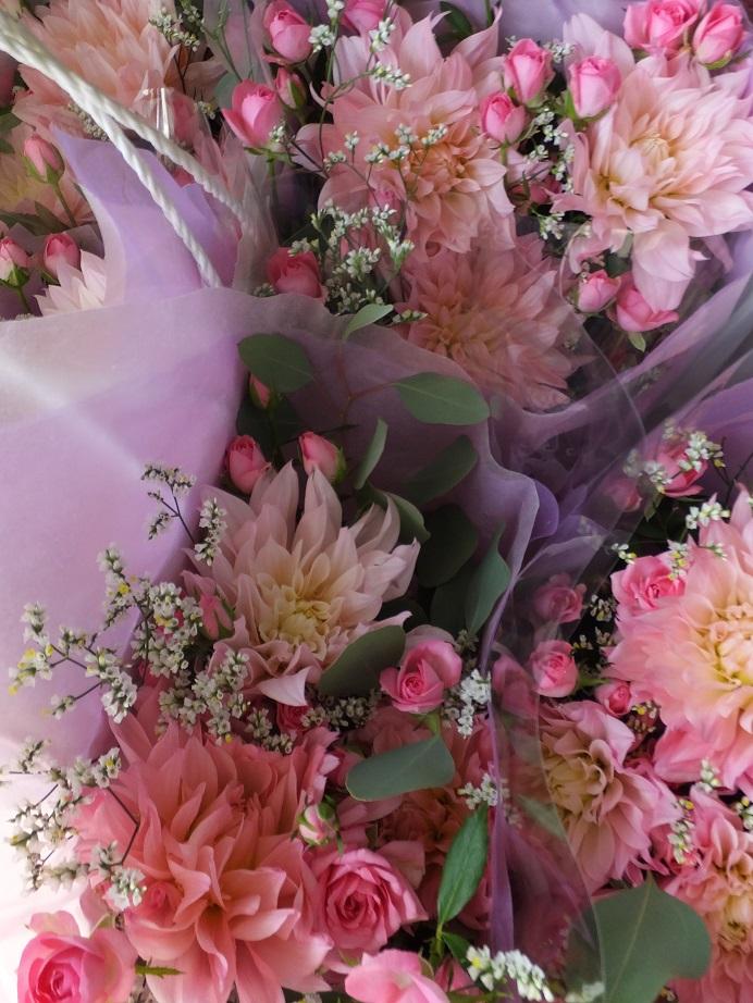 オークリーフ(キャットショーの花束)_f0049672_13305687.jpg
