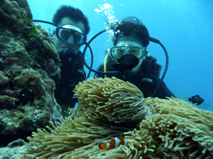 ラチャヤイ島でのんびりと_f0144385_8582482.jpg