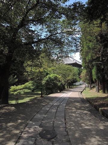 奈良にて^^_a0211886_23125831.jpg