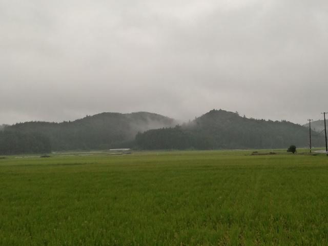 雨が降っています(*^^*)_c0140599_11582856.jpg