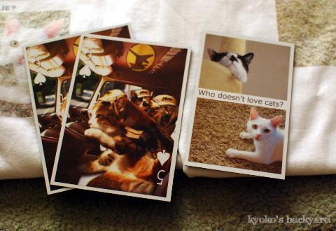 フクちゃんのんちゃん猫グッズ♪_b0253205_01493910.jpg