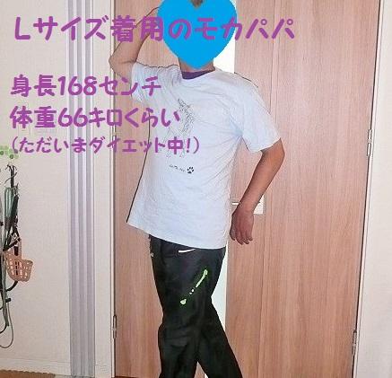 f0121712_5341066.jpg