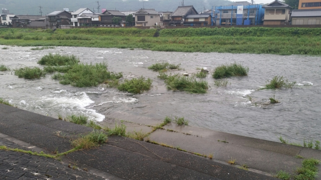 8月30日   河川状況。_c0266737_06223039.jpg