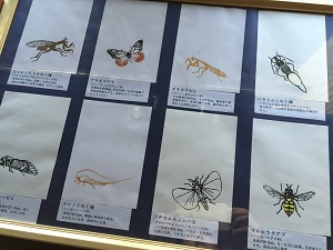 「極楽蜻蛉の友」展~(米田友和△□○展)_f0233340_0275435.jpg