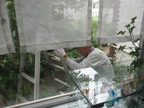 朝ご飯とおじさんの木の剪定_a0279743_13104317.jpg