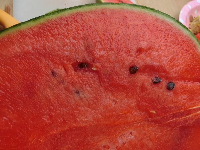 シンゴ家で栄養補給!!_a0199979_20441688.jpg