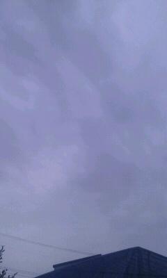 f0127282_8502544.jpg