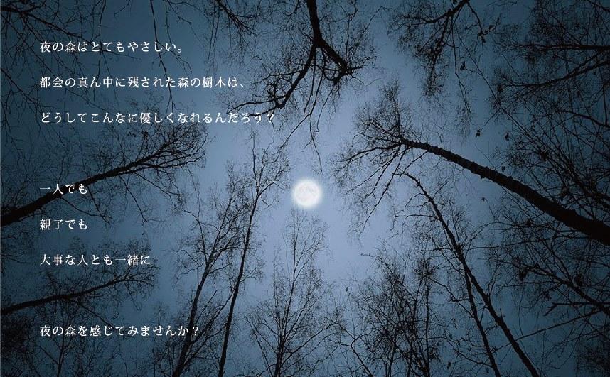 c0145988_10495218.jpg