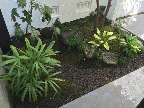 近況にアップします。宮崎市S様garden renovation_b0236217_2130118.jpg