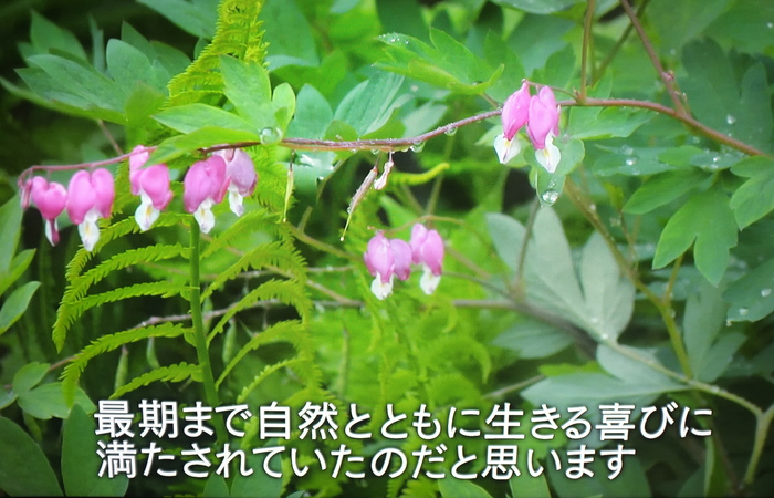 c0308431_18561587.jpg