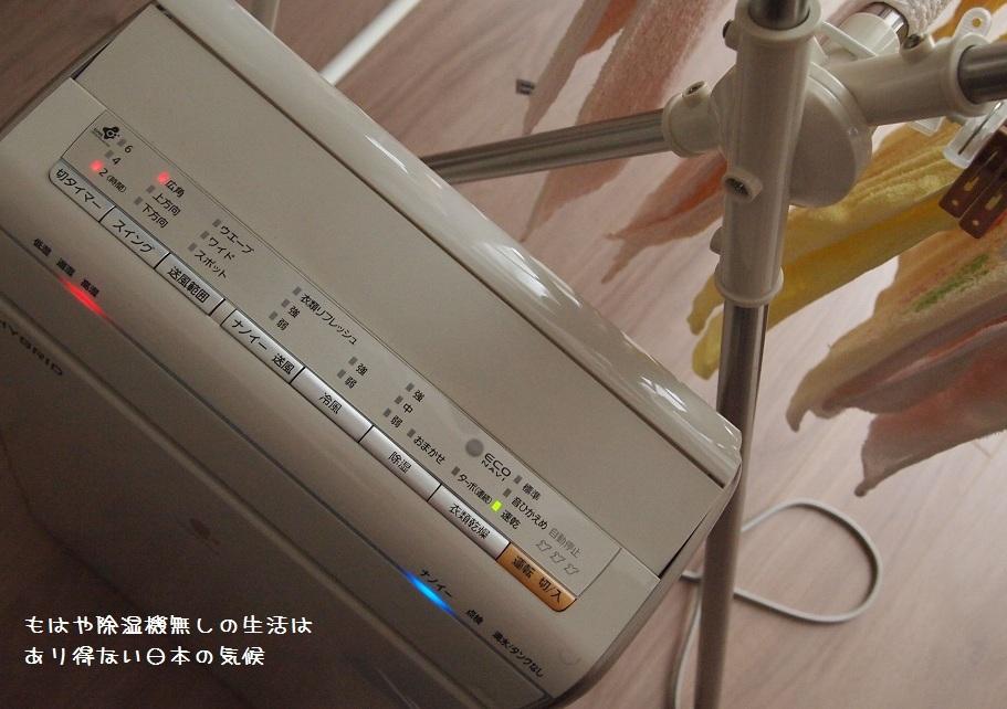 f0224347_13584436.jpg